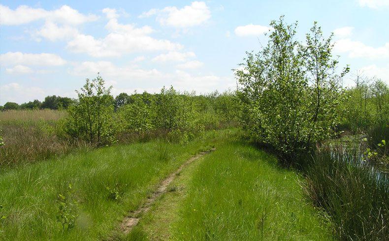voetzoekers-geeserstroom-pad-langs-geeserstroom