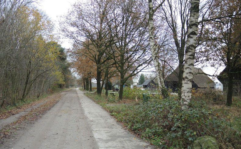 voetzoekers-schaapskooi-achter-t-zaand-pad-langs-schaapskooi