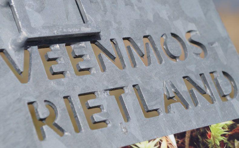 voetzoekers-vlonderpad-de-wieden-veenmos-rietland
