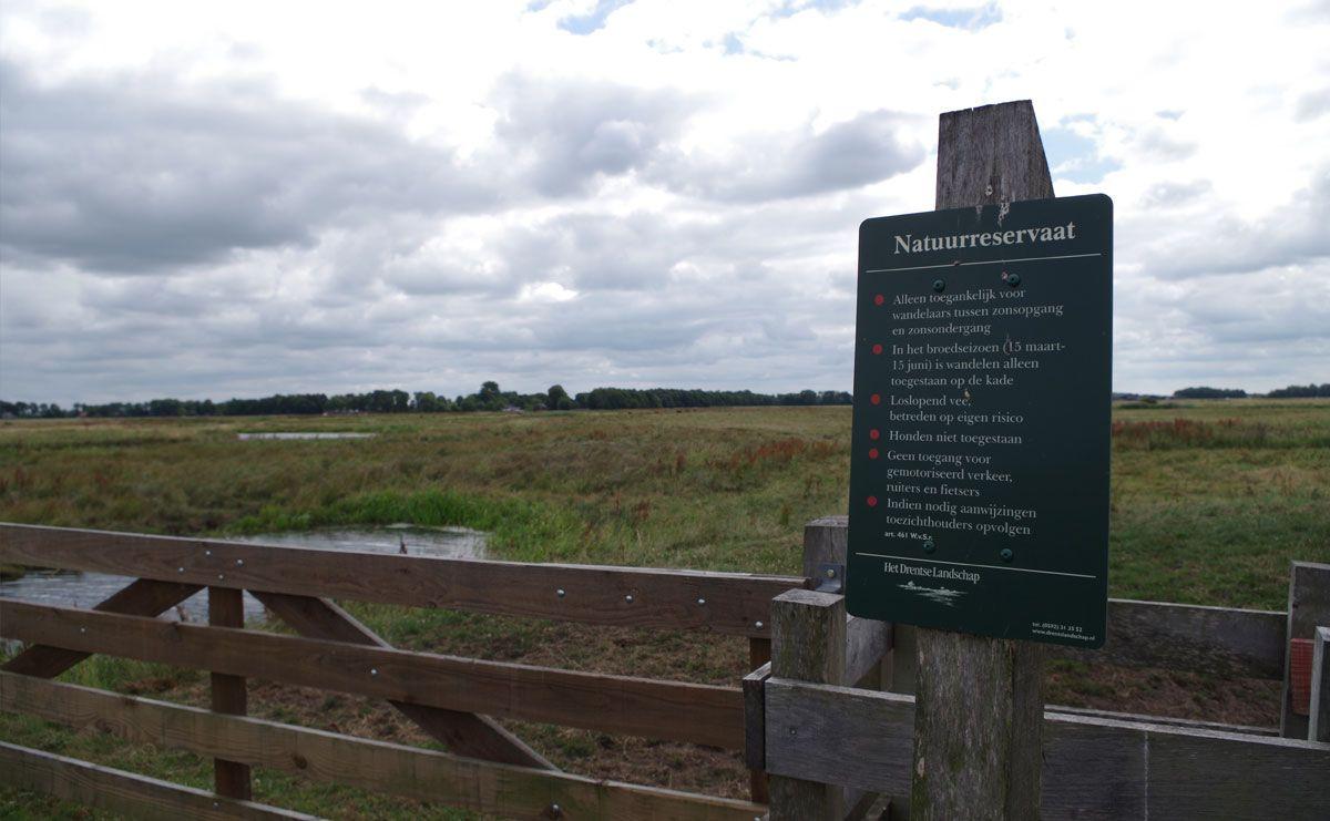 voetzoekers-annermoeras-natuurreservaat