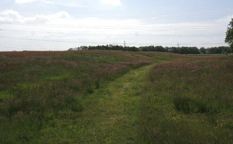 voetzoekers-oude-kene-uitkijkheuvel