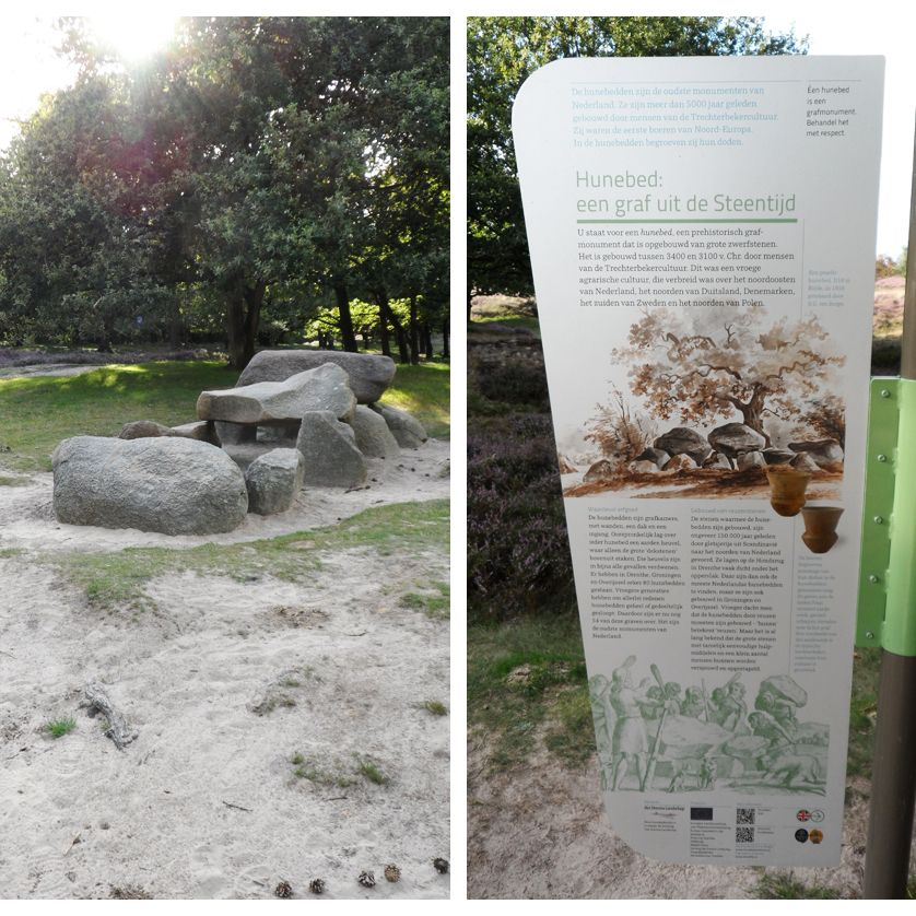 voetzoekers-de-gasterse-duinen-hunebed-d10-plus-bord
