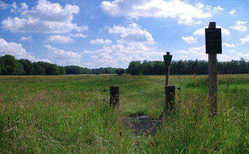 4.5 km – Beekdal Hondstong