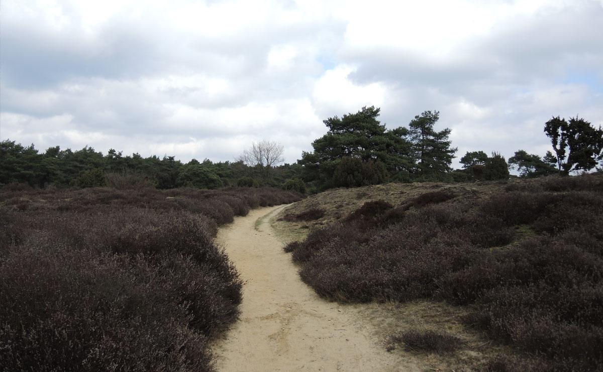 5 km – Drouwenerzand